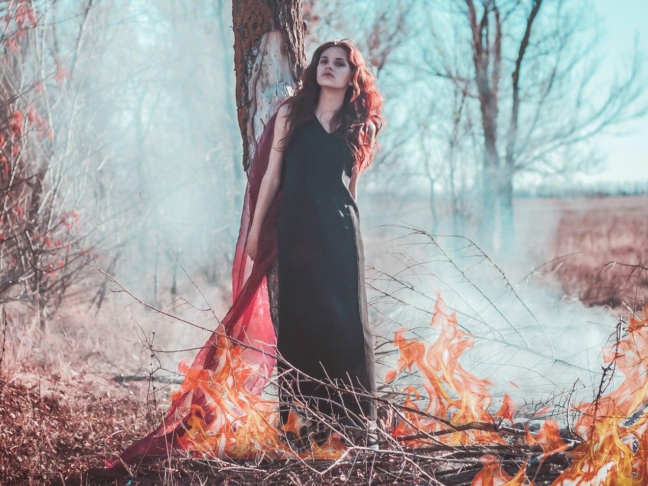 The Devil of the Inquisitors: Cases of Maleficium and Witchcraft
