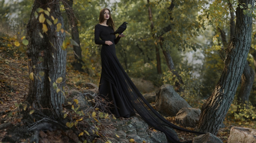Experiencing Gothic Anthropology: Author and the Genre
