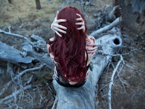 Gothumentary: Horror Cinema, Desire, and Sensation