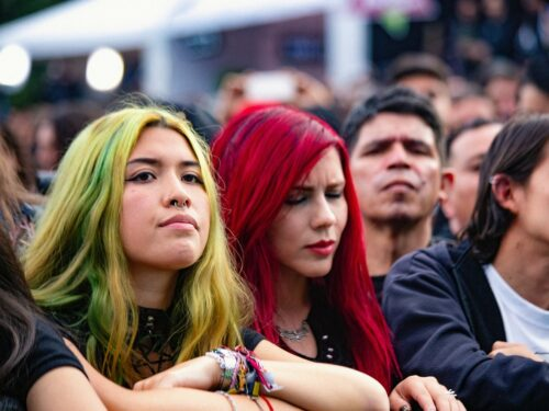 Representation of Women in Heavy Metal as a Subculture