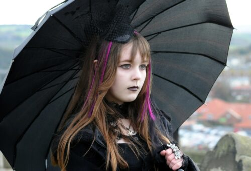 Creative Business from the Point of View of Goth Subculture